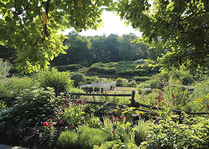 Jul 20, 2019: Saturday Garden Tours at Brian C. Nevin Welcome Center