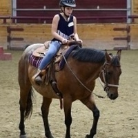 Youth Day Horseback Riding Camps