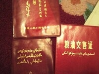 Cornell Contemporary China Initiative - Guldana Salimjan