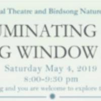 Illuminating Site: Birdsong Window Gardens