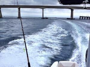 LET'S JUMP IN & GO! Offshore Fishing