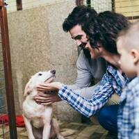 Zignature partners with Pet Supply of Santa Clarita in honor of Adopt a Shelter Pet Day