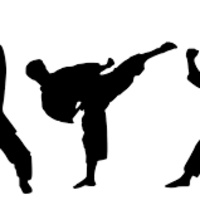 Teen Karate- SC