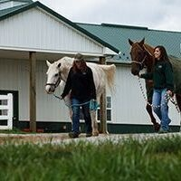 Campus Rec Fest: Equestrian Center Walking Tours