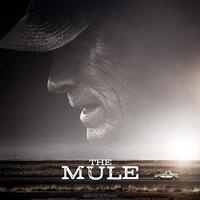 Saturday at the Cinema: The Mule