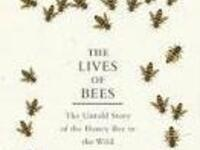 Science On Tap: The Lives of Bees - The Untold Story of the Honey Bee in the Wild