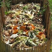 Garden With the Master Gardeners: Composting