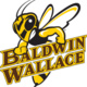 Baldwin Wallace University External Advising