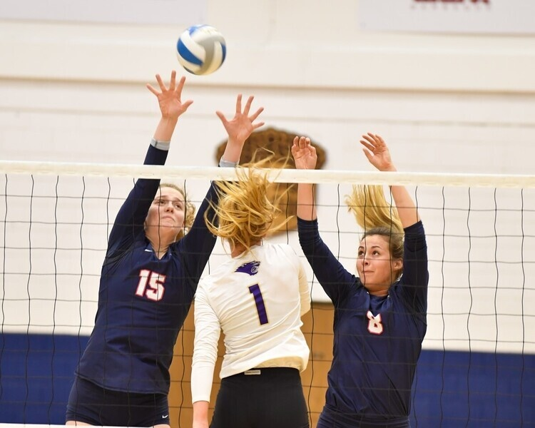 USI Volleyball vs Ohio Dominican University at Evansville, IN, Screaming Eagles Arena