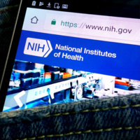 The Ins and Outs of Being a Postdoc at the NIH