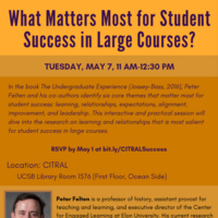What Matters Most for Student Success in Large Courses?