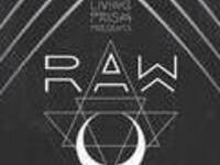 RAW feat. Minnesota / Thriftworks / Phutureprimitive / Axel Thesleff