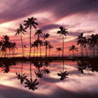 Hawaii Chapter Alumni Reception